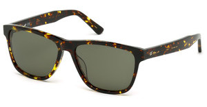 Web Eyewear WE0161 52N